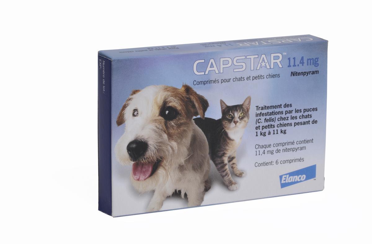 anti puce chat et anti puce chien capstar petit chien et chat elanco novartis une pharmacie. Black Bedroom Furniture Sets. Home Design Ideas