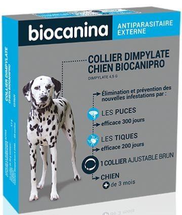 Conception De Collier Collier Anti Puce Chien Pharmacie