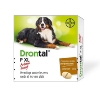 Drontal XL Chien - BAYER